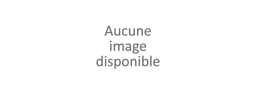 Guêpière-Bustier et Corset